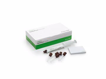 GuttaFlow Bioseal standard set 60019560
